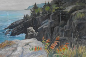 Acadia Cliffs by Wini Smart