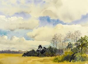 Everglade Hammock by Wini Smart